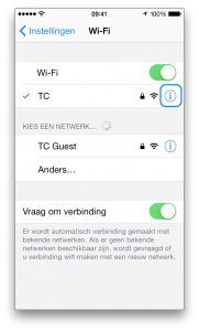 iPhone DNS 2